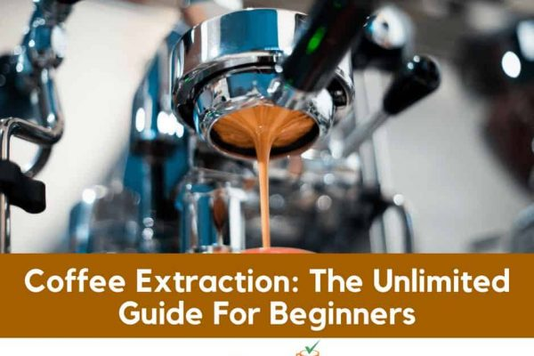 Coffee Extraction: The Unlimited Guide For Beginners