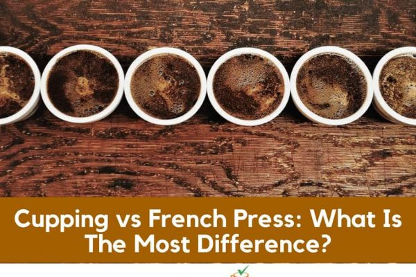 Cupping vs French Press: What Is The Most Difference?