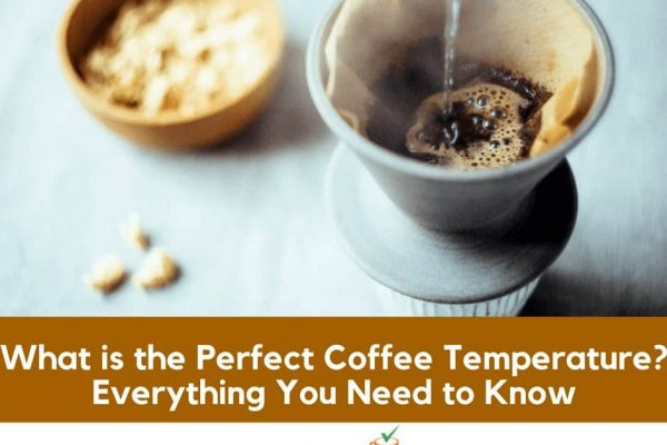 What is the Perfect Coffee Temperature? Everything You Need to Know