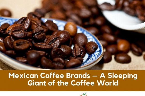 Best Mexican Coffee Brands – Top 11 Picks (2019 Updated)