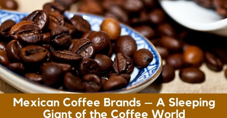 Best Mexican Coffee Brands – Top 11 Picks (2018 Updated)