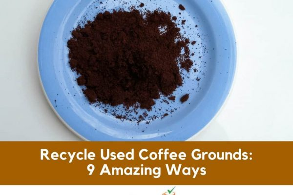 9 Amazing Ways to Recycle Used Coffee Grounds
