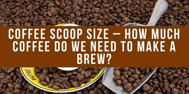 Coffee Scoop Size – How Much Coffee Do We Need to Make a Brew?