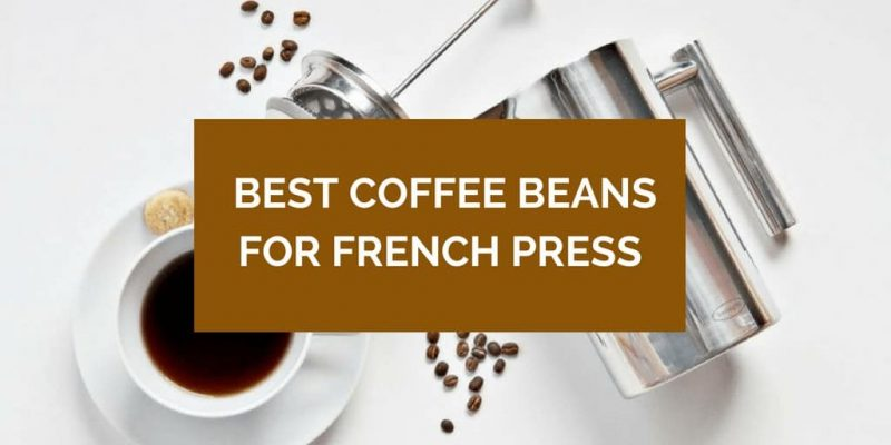 10 Best Coffee for French Press (Whole Beans & Pre-Ground)