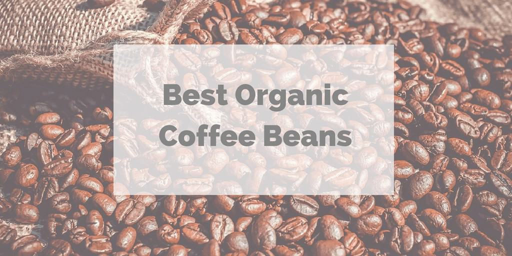 Best Organic Coffee Beans