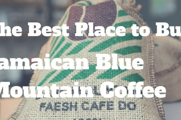 10 Best Places to Buy Jamaican Blue Mountain Coffee (2019)