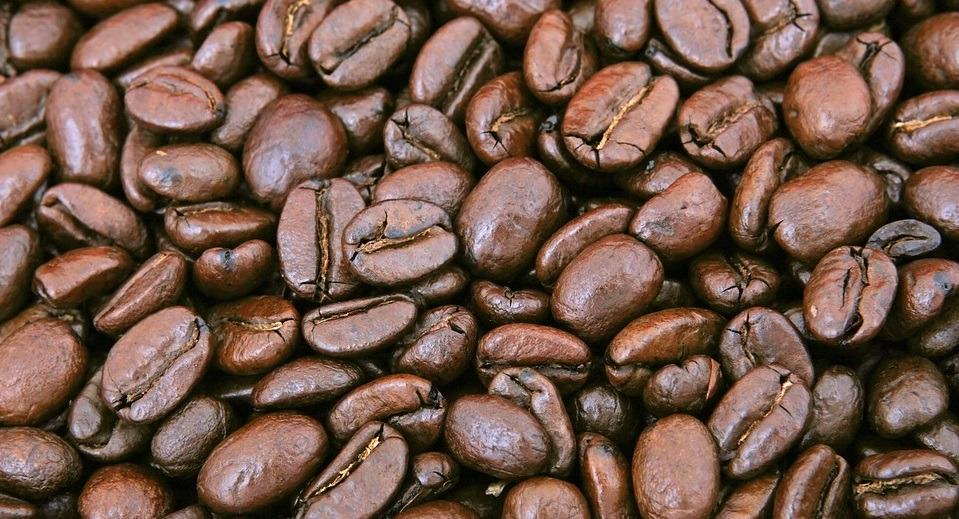 Best Decaf Coffee Swiss Water Process