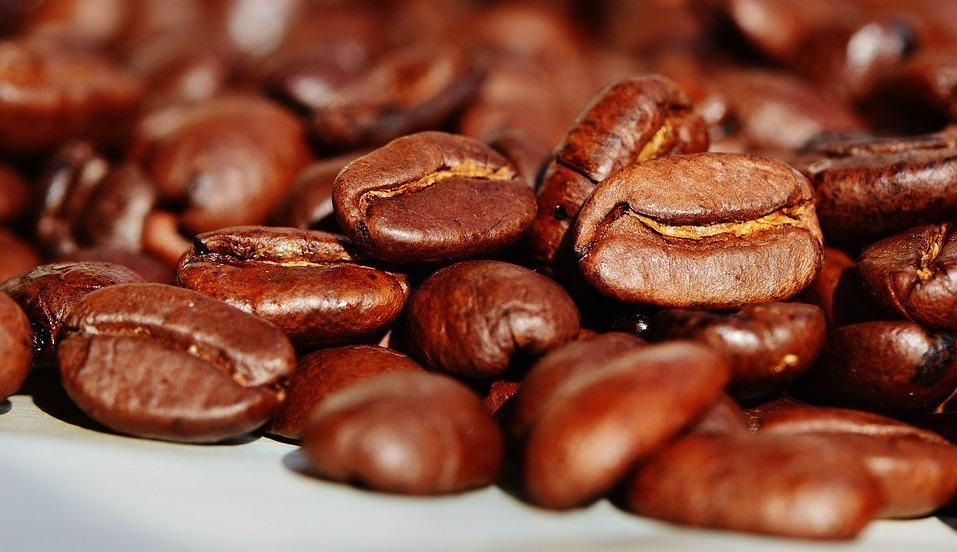 best decaf coffee beans Choose