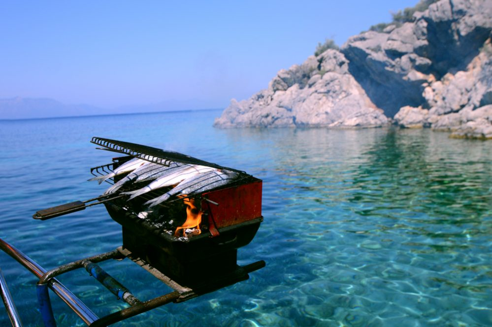 Best Boat Grill buying guide