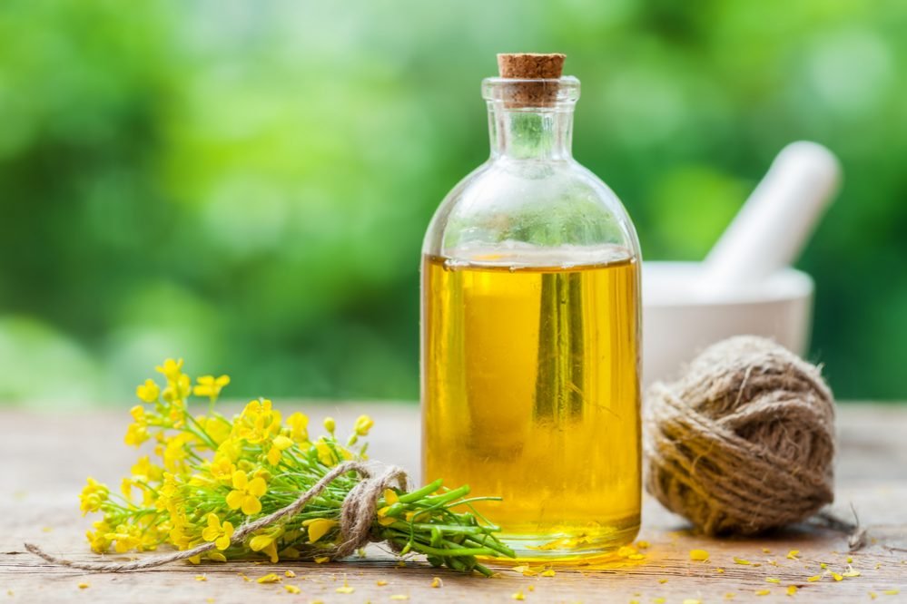 Best Olive Oil for Cooking Canola Oil