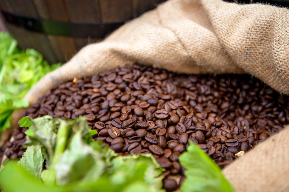 Organic Coffee vs. Conventional Coffee 1