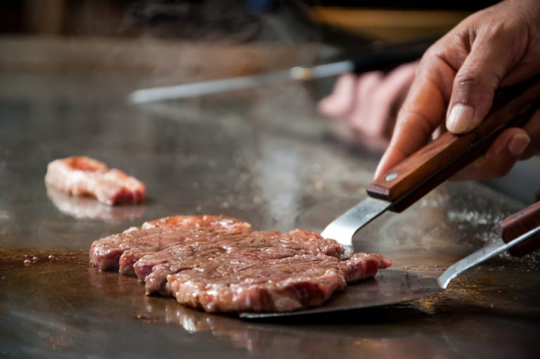 Best Teppanyaki Grill Reviews