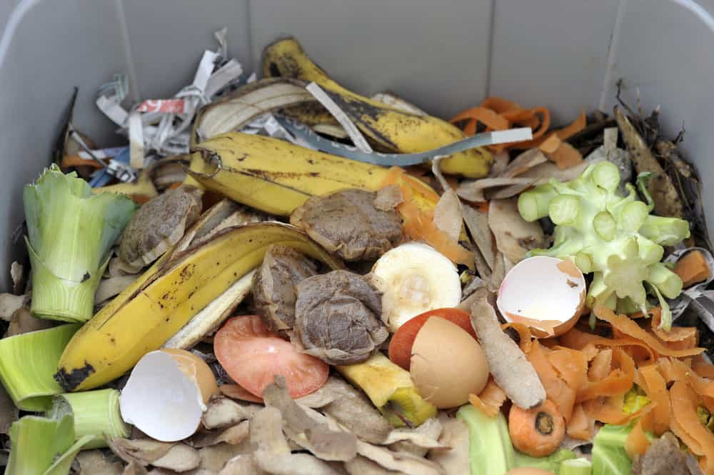 Waste Removal Tips 1